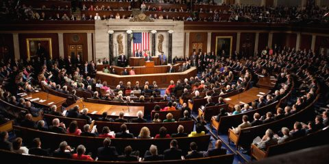 Congress From a Constitutional Perspective