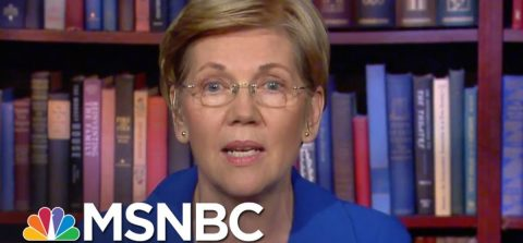 Elizabeth Warren: The Face of the Galactic Stupidity of the Democrat Party