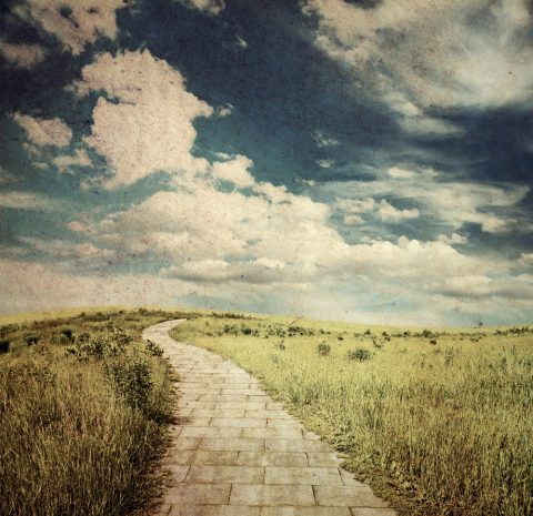Evolution and the Yellow Brick Road