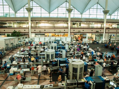 The TSA, Uninvited Guests, and Other National Problems