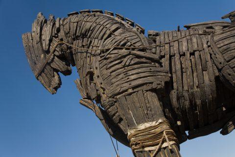 The Transgender Trojan Horse