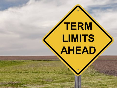 Term Limits and Special Interest
