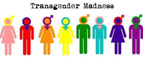 The Fallacy of 'Transgender'