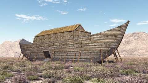 Potential New Evidence and Theory in the Search for Noah's Ark