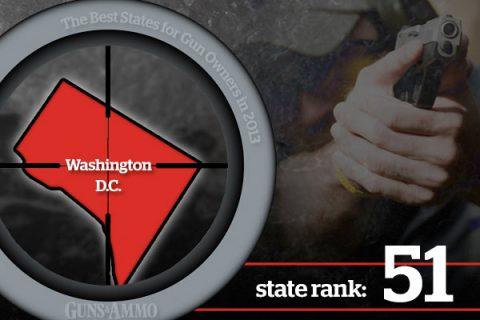 Did Guns or a Criminal Kill a DNC Staffer?