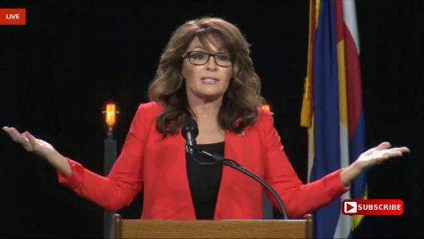 An Open Letter to Sarah Palin: Go Home Sarah, You're Drunk!