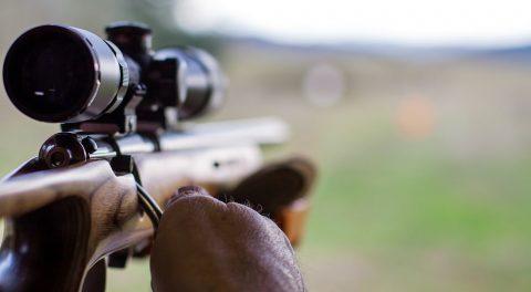 Evil Control – With A Gun