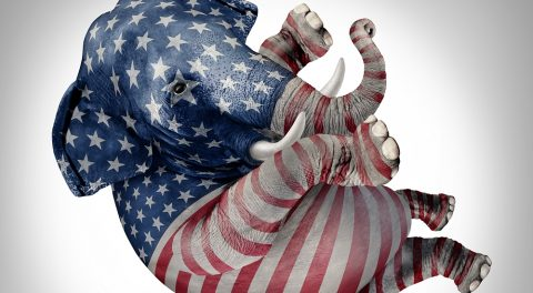 The RNC is a Dead Elephant