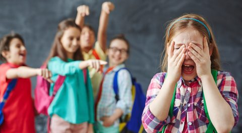 Political Correctness and Schoolyard Bullying