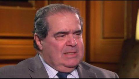 Democrat Candidate Happy Supreme Court Justice Scalia Died