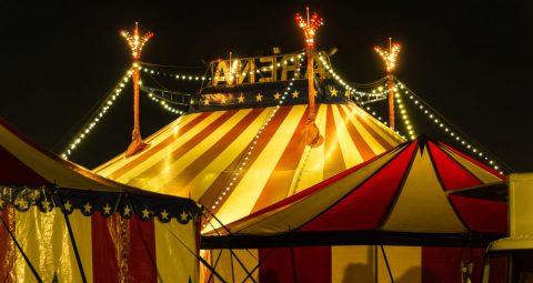 The Political Circus