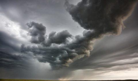 Category 5 Political Storm