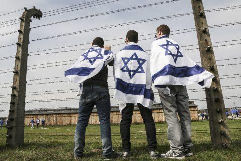 Terrorists Are Not Holocaust Survivors