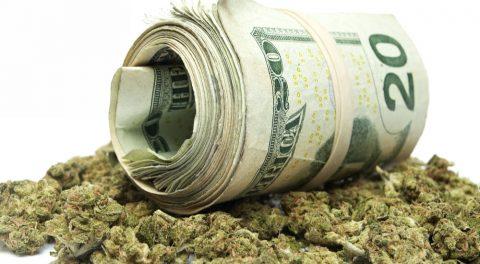 The Impact of Recreational Marijuana Legalization
