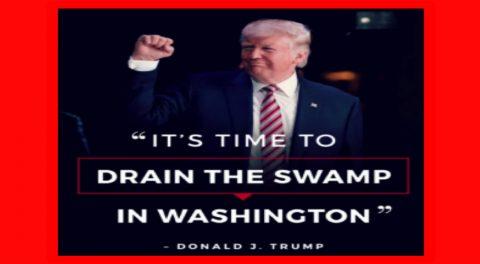Trump vs. The Swamp