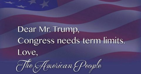We Desperately NEED Term Limits!