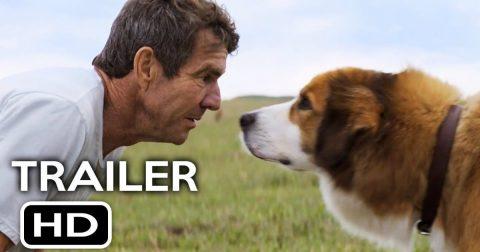 """Bogus PETA Case Against """"A Dog's Purpose"""" Movie"""