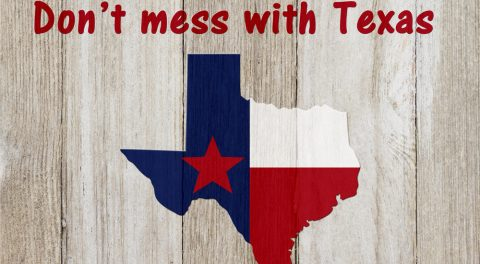 Illegals: Don't Mess With Texas
