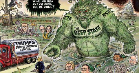 Swamp Rant
