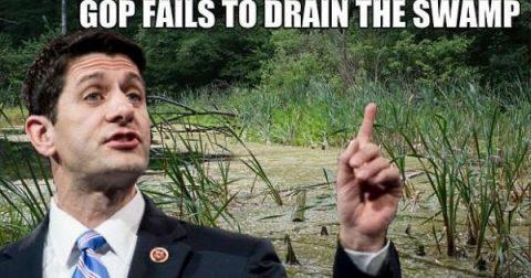 """""""Winning"""" In D.C.'s Swamp?"""