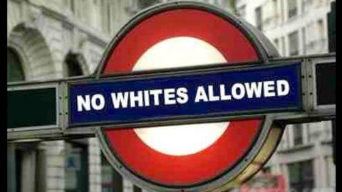 Anti-White Bigotry on Display