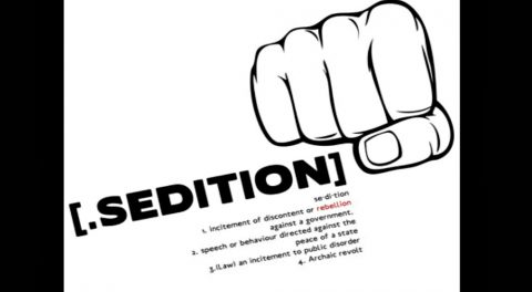 Why are openly Seditious Democrats NOT being Charged with Sedition?
