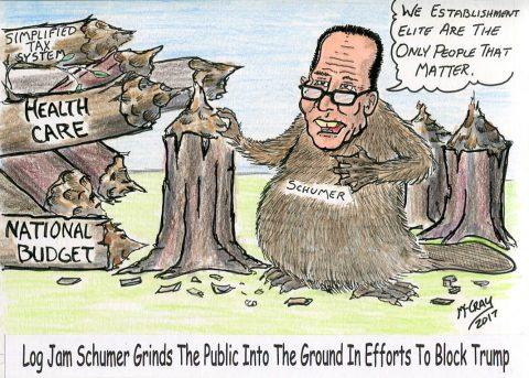 Log Jam Schumer