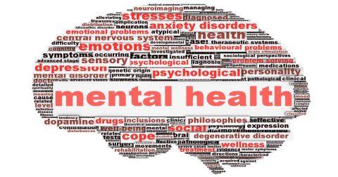 The Leader's Mental Health Matter