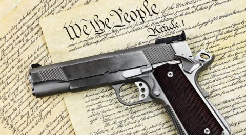 The 2nd Amendment Protection Act