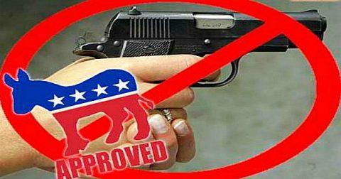 Liberal Gun Control Insanity