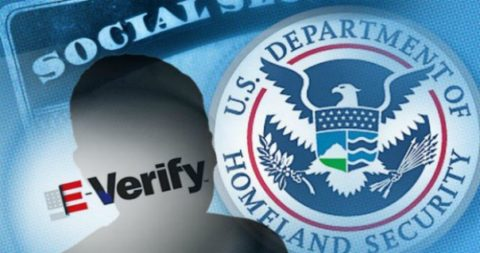 "What if E-verify costs us everything and can't stop ""amnesty"" anyway?"