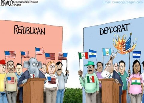 Realizing Democrats are Domestic Enemies Makes Them Easy to Understand
