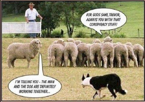 Political Secrets