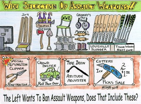 Does The Left Really Want All Of Our Assault Weapons?