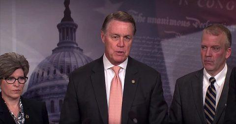 GOP Senators Literally Begging to be Put to Work!