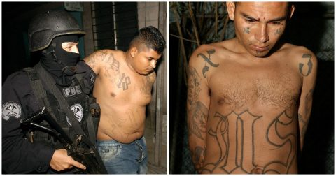 Why Do Democrats Support the Violent MS-13 Gang?