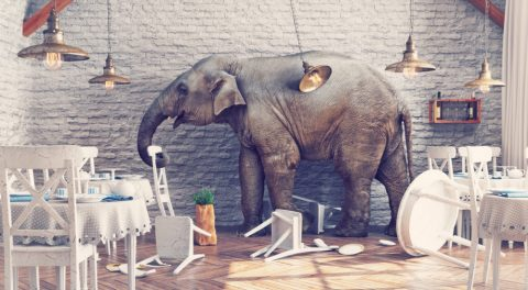 Blaming Third Parties for Major Party Losses Ignores the Elephant in the Room