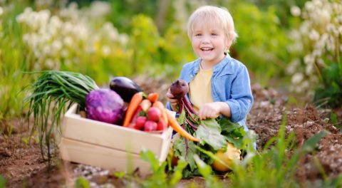 Some on the Left have Figured Out the Myth of Organic Farming
