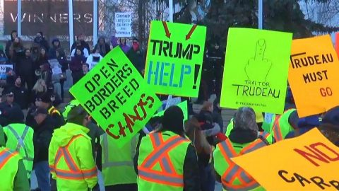 Canadian Protesters Beg Trump for Help!