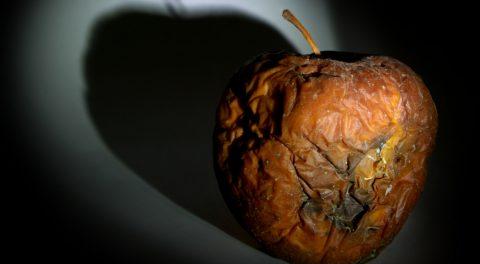 New York: The Rotten Apple