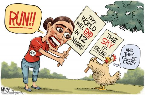 Educating Young Liberals with Chicken Brains – The AOC Model