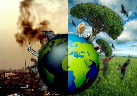 Democrats Fight the Noble Cause of Saving the Planet